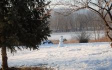 morning snowman